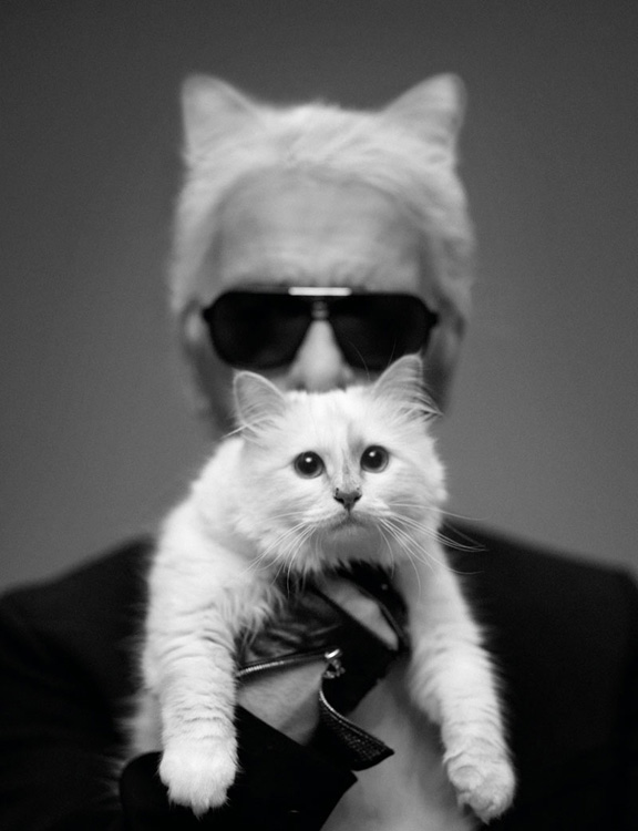 choupette, karl lagerfeld, wanda, dogs, ridiculous